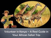 Volunteer in Kenya – A Real Guide in Your African Safari Trip